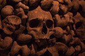 Photo Collection of skulls and bones covered with spider web and dust in the catacombs. Numerous creepy skulls in the dark. Abstract concept symbolizing death, terror, and evil.