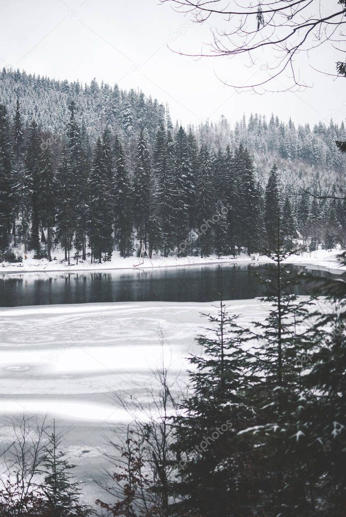 Beautiful mountain lake Synevyr in Ukraine. Frozen lake covered with snow against dark winter forest and mountains covered with clouds. Grey cloudy sky