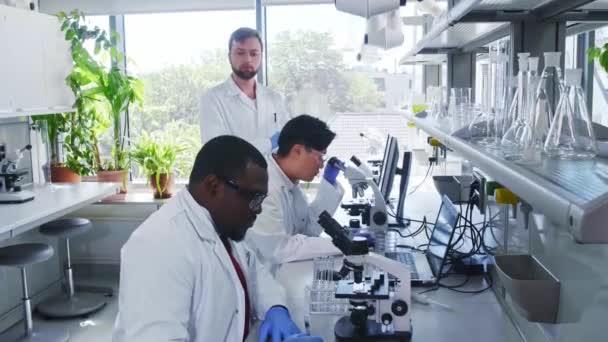 Vědci a studenti pracující v laboratoři. Doktor učí stážisty analyzovat výzkum. Laboratorní nástroje: mikroskop, zkumavky, vybavení. Biotechnologie, chemie, bakteriologie, virologie.