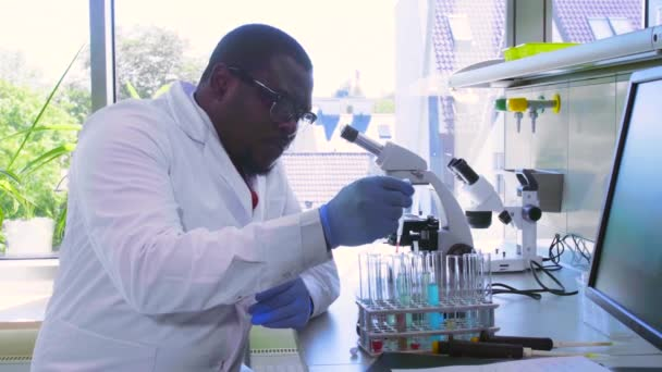 African-american scientist working in lab. Doctor making microbiology research. Biotechnology, chemistry, bacteriology, virology, dna and health care.