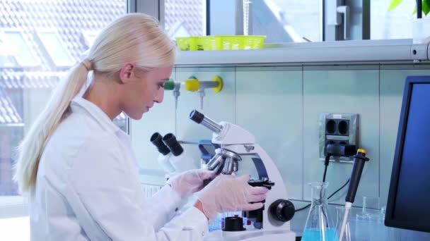 Wissenschaftler, die im Labor arbeiten. Ärztin, die medizinische Forschung betreibt. Laborwerkzeuge: Mikroskop, Reagenzgläser, Geräte. Biotechnologie, Chemie, Naturwissenschaften, Experimente und Gesundheitskonzept.