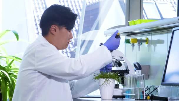 asiatischer Wissenschaftler, der im Labor arbeitet. Arzt, der mikrobiologische Forschung betreibt. Laborwerkzeuge: Mikroskop, Reagenzgläser, Geräte. Biotechnologie, Chemie, Bakteriologie, Virologie.