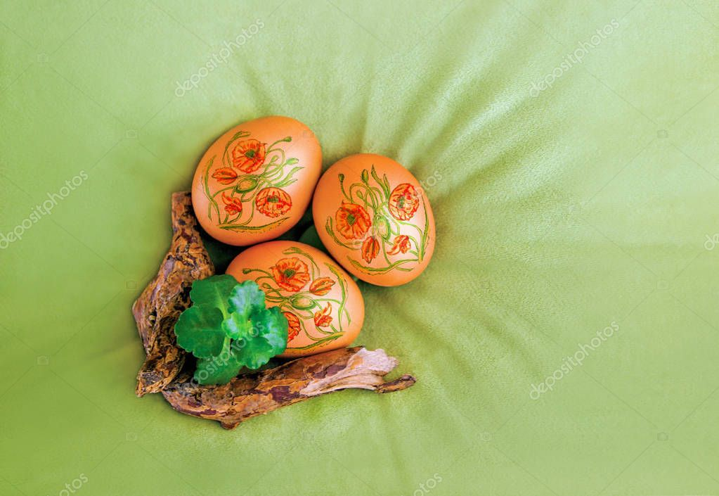 Easter eggs decorated with poppy flowers and a branch and plant on velvet, olive, green canvas background, top view. Concept for greeting card, poster, flyer, web banner, cover for networks.