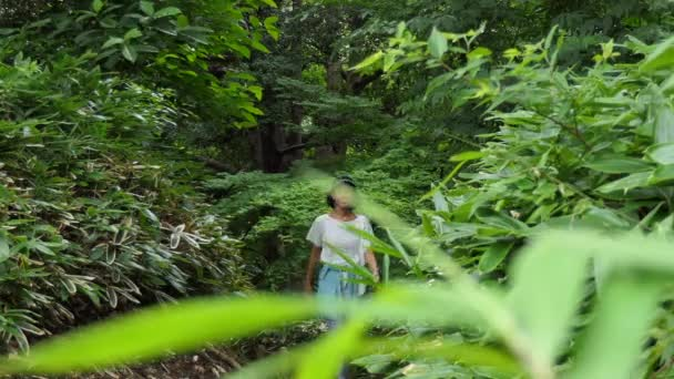Asijka chodí a běhá v městském parku. Šťastná japonská dáma běhá venku. Lidé a sportovní aktivity pro zábavu, fitness, volný čas, rekreaci a zdravý životní styl