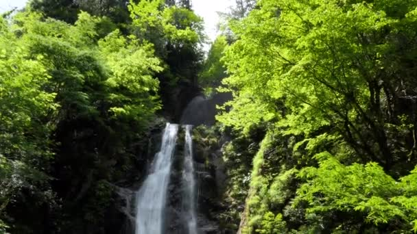 View of Dakigaeri Gorge or Dakigaeri Valley in Akita Prefecture, Japan, Asia. Popular Japanese tourist spot and travel destination with forest, trees, waterfall, river with crystal clear blue water