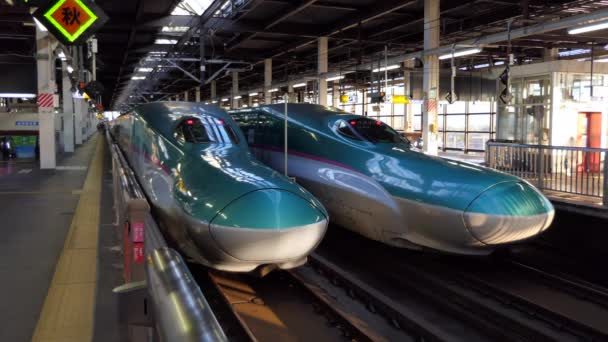 MORIOKA / JAPAN - JULY 2019: Two E5 Series Shinkansen bullet trains in Morioka JR railway station, Japan, Asia. Modern transportation, fast travel, Japanese travelers and Asian commuters on platform with train