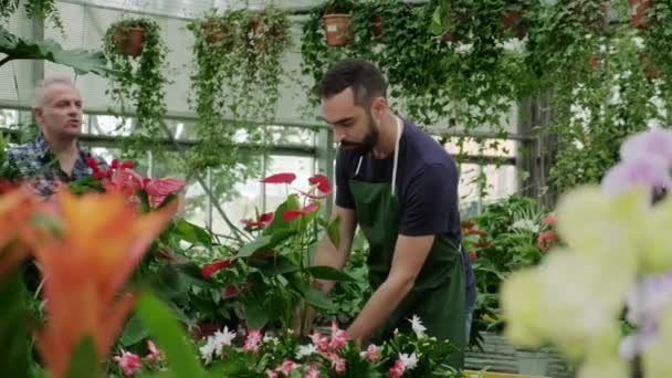 Busy young man at work as florist in flower shop. Sales assistant talking to client buying plant. Customer in store and speaking to business owner. Skilled job and profession