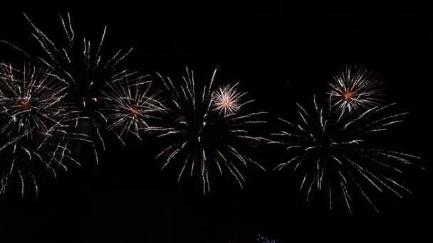 Různé ohňostroje na noční obloze, izolované na černém pozadí