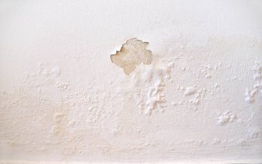 Rain water leaks on the wall causing damage and peeling paint