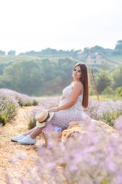 Side view of pregnant woman sitting on hay bale in violet lavender field and looking at camera stock vector