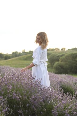 attractive woman in white dress walking in violet lavender field and touching flowers