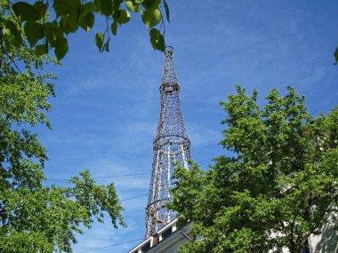 TV tower stands behind birch tree in summer