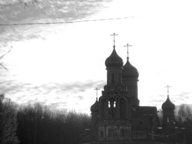 Orthodox Church through the leaves of a tree, Moscow