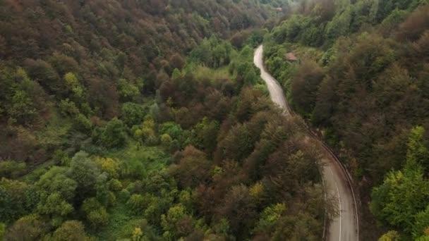 Stara Planina v Srbsku - Cesta do Starých hor turistické destinace v mlžném dni s lesními stromy na podzim - Cestovní cesta a dovolená koncept
