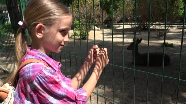 Kind im Zoopark, Mädchen beobachtet Hirsche, Kinder lieben Pflegetiere, Haustiere pflegen
