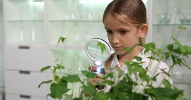 Bambino nel laboratorio di chimica, scuola ragazza che studia le piante progetto educativo 4K