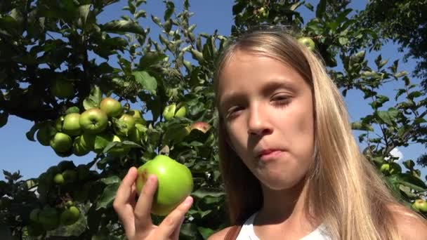 Gyermek étkezési alma, gyerek, gyümölcsös, Farmer lány tanult gyümölcsök fán