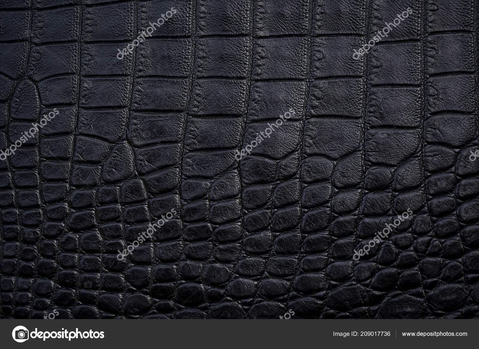 Close Black Crocodile Alligator Belly Skin Texture Use