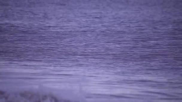 ocean waves breaking on the shore at dusk