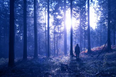 Woman standing in the mystic foggy deep forest with sunlight.