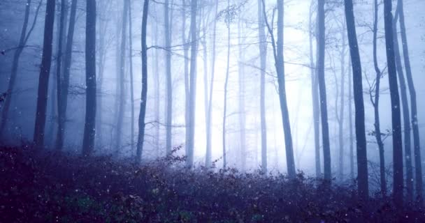 Fantasy blue pink coloured foggy fairytale forest with magic firefly lights background.