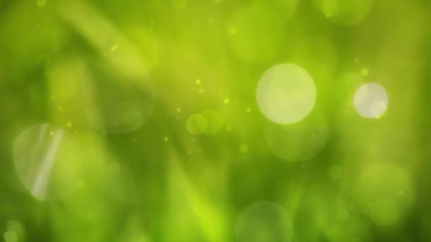 Ranní zelené trávě bokeh pozadí. Selektivní fokus použité.