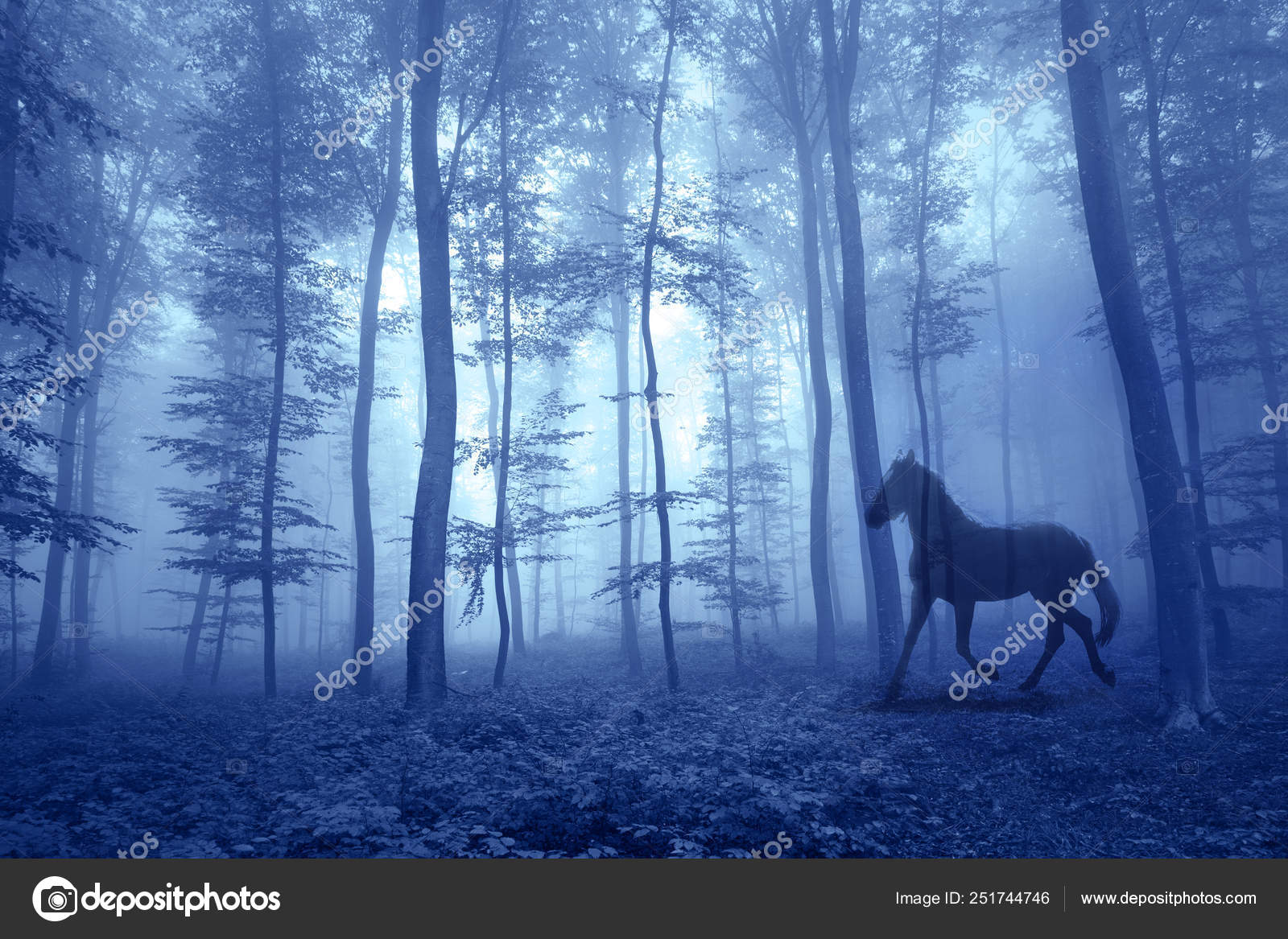 Magic Foggy Forest With Running Horse Stock Photo C Robsonphoto 251744746