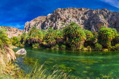Palm forest on Preveli beach, Crete, Greece, Europe. Crete is the largest and most populous of the Greek islands.