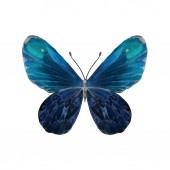 Photo Illustration with watercolor butterfly on white background.