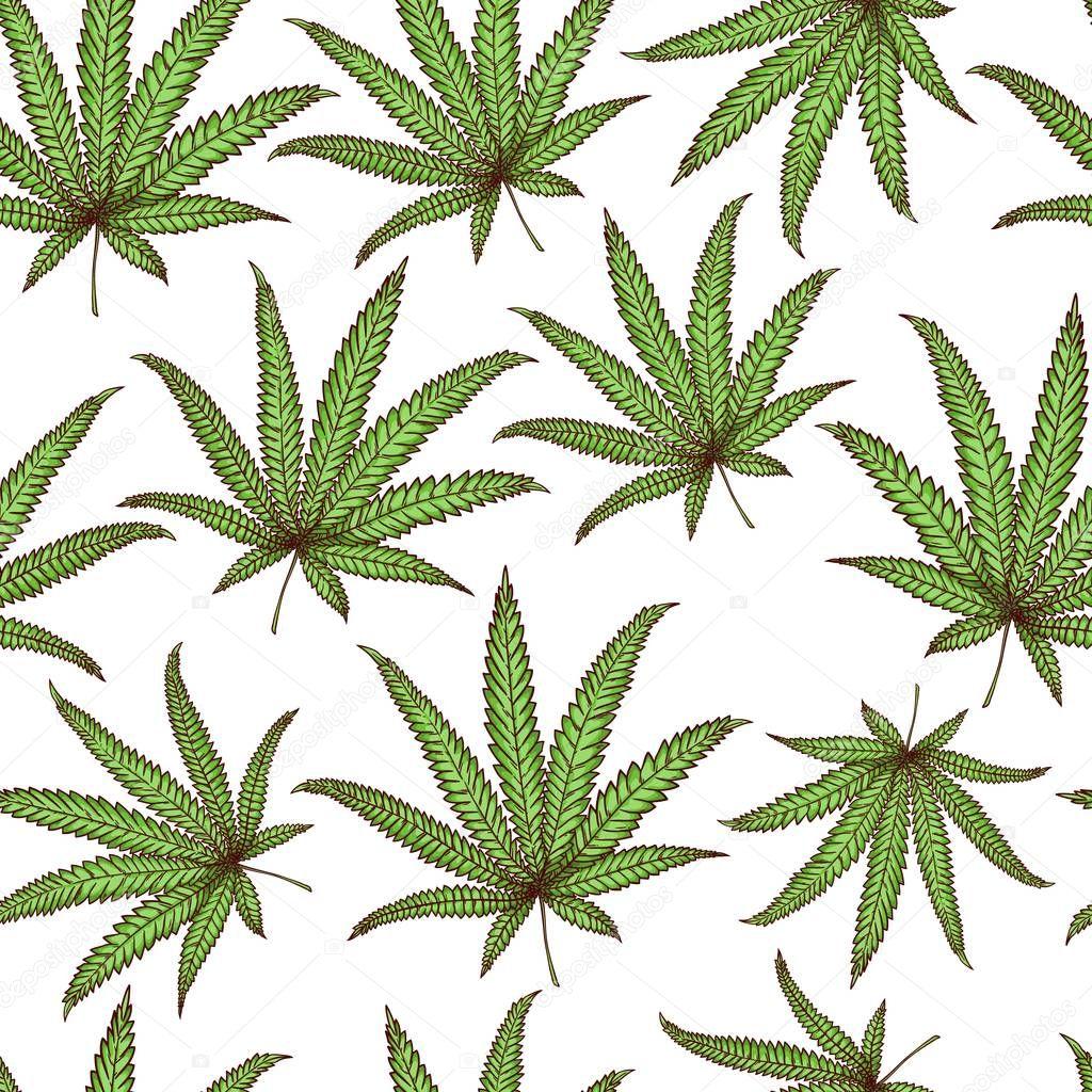 Vector cannabis leaves, green weed, hemp icon