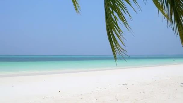 Mávající Karibská moře tyrkysová voda bílý písek pláž slunné tropické pobřeží idylické nikdo na Pasir Panjang Kei Islands Indonésie Moluccas Maluku Indonésie