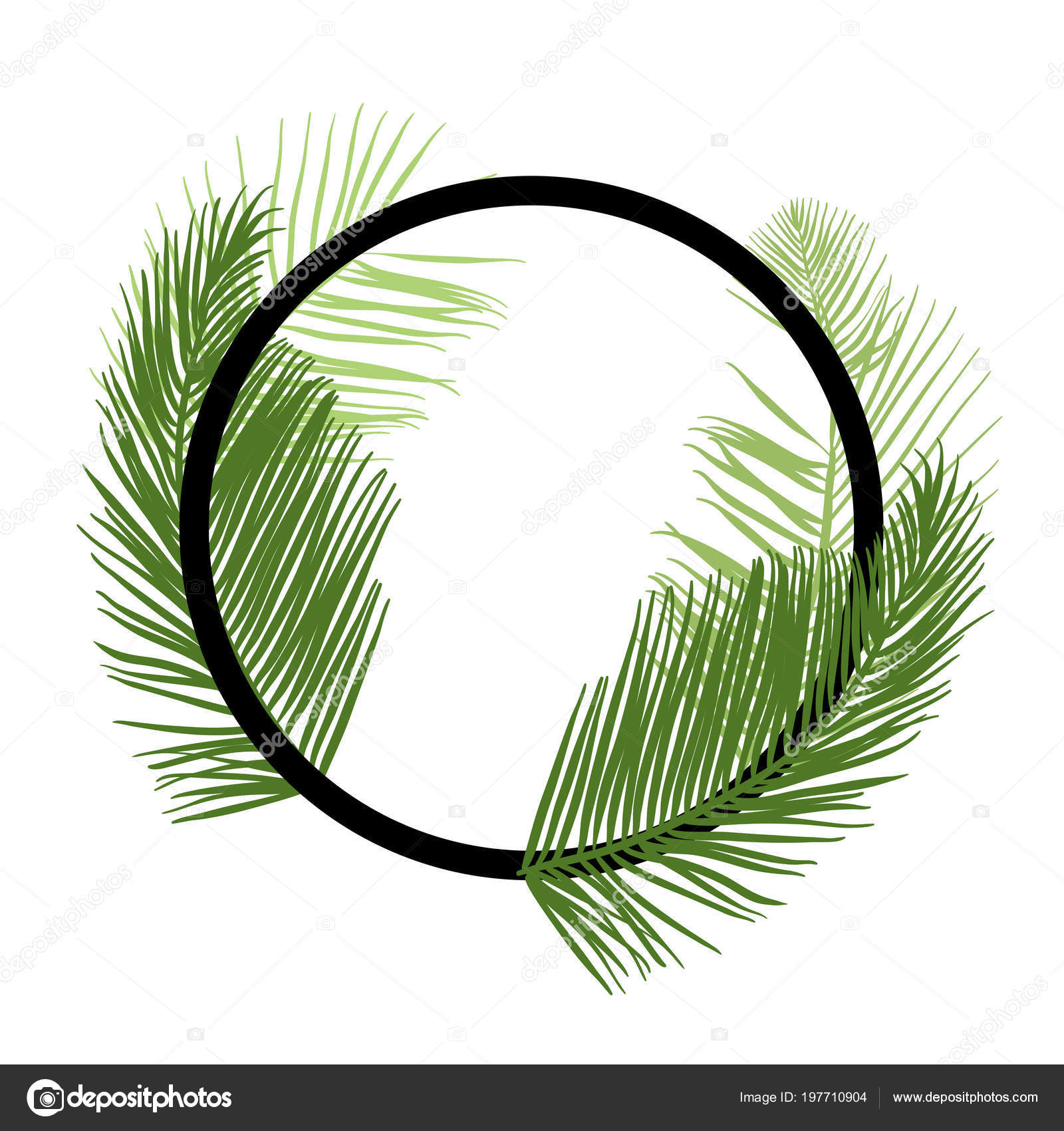 tropical palm leaf border vector � stock vector