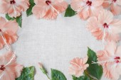 Pink peachy Hibiscus flowers on linen, copy space background