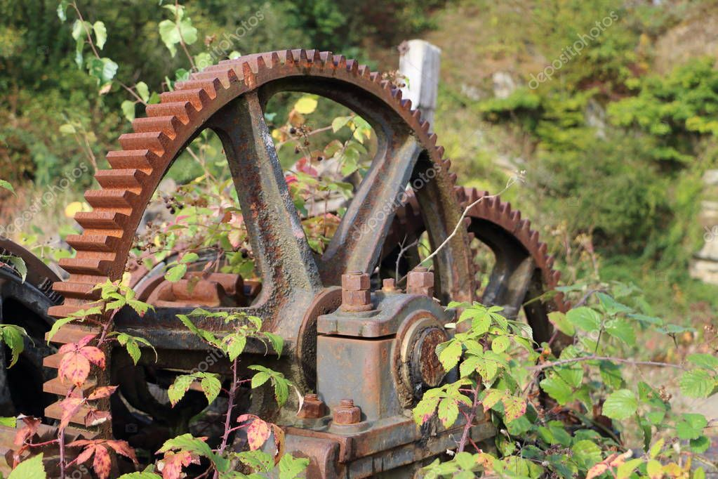 Old mechanical gear rusting away in the woods