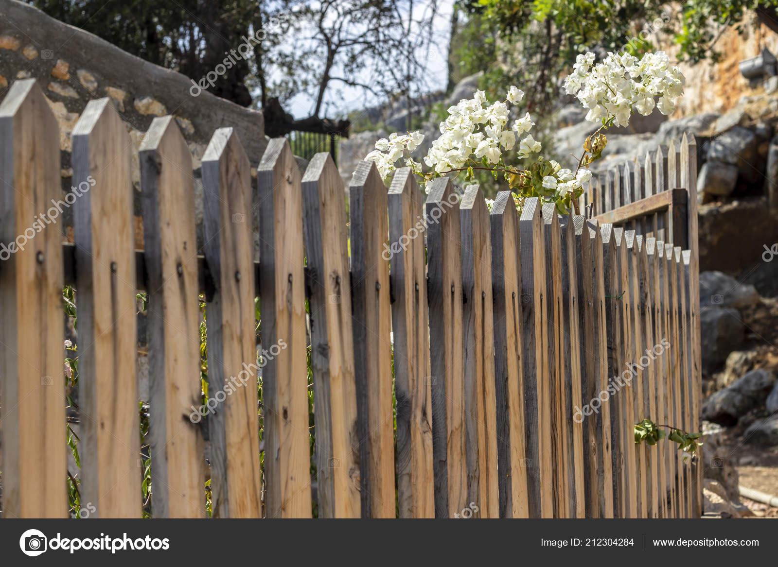Recinzioni Legno Per Giardino.Tiro Prospettiva Recinzioni Legno Vecchi Giardino Con Sfondo Sfocato