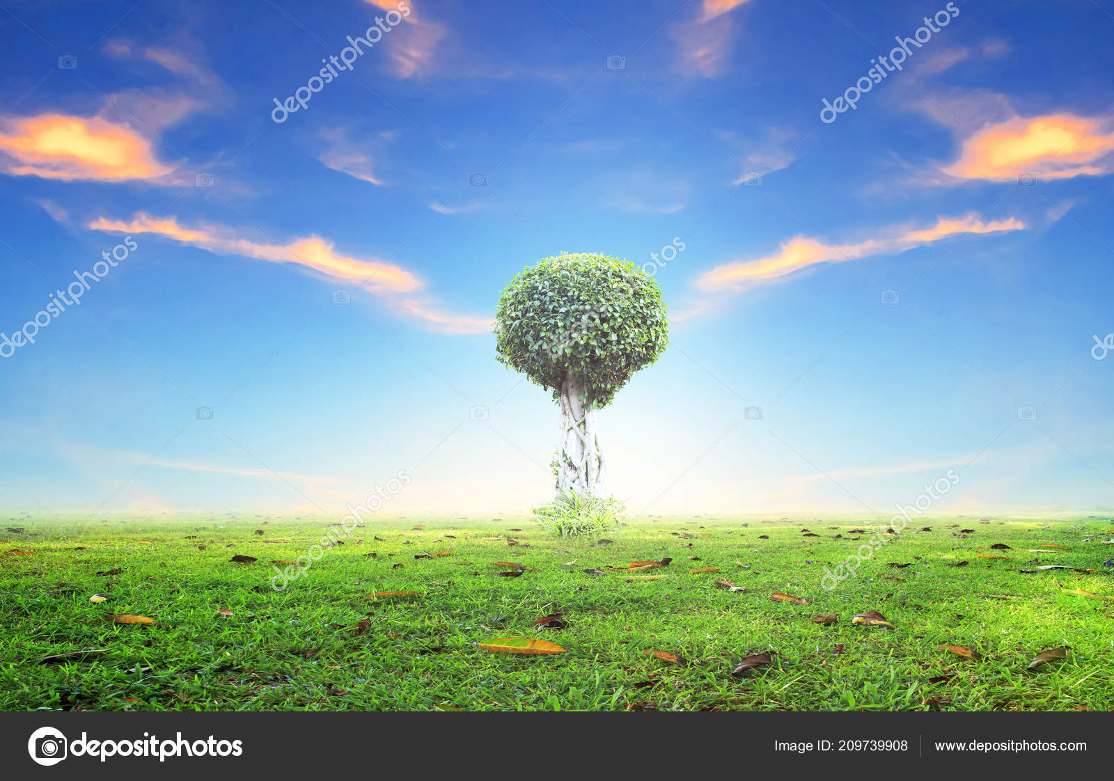 Images World Beautiful Wallpaper World Environment Day Concept