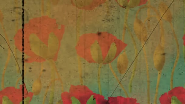 Poppy flowers opening and close pattern. Slow motion background.