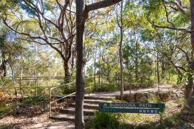 Bungoona path in Royal National Park