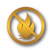 Fire forbidden icon. Internet button on white background