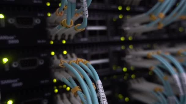 blaues Optcial-Kabel aus nächster Nähe. Server-Rack blinkt grün.