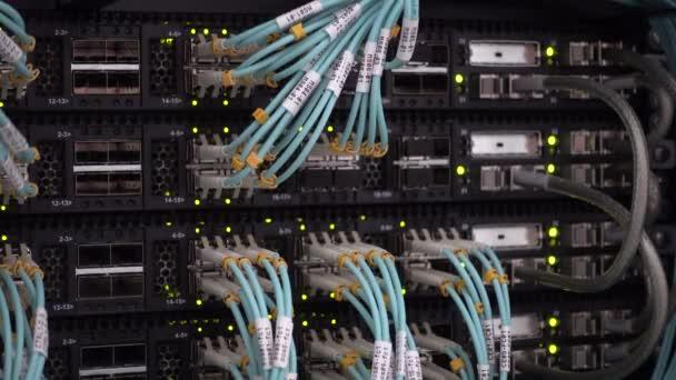 Serverraum mit blinkendem Licht und lebendigen Glasfaserkabeln.
