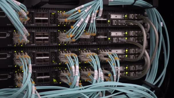 Lights and connections on network server.