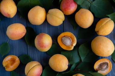 Background with apricots. Photo of fresh apricot with green leaves and place for copy space on a gray wooden background. Apricots close-up. Agriculture, advertising, diet and healthy nutrition