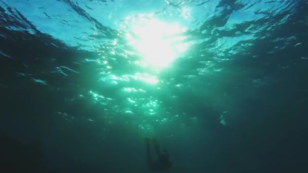 Schnorchelmädchen schwimmt in Richtung Kamera - Gegenlicht
