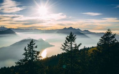 aerial Point of interest shot of pine tree with beautiful mountain scenery covered in fog with lake swiss alps rigi, sun shining directly in camera