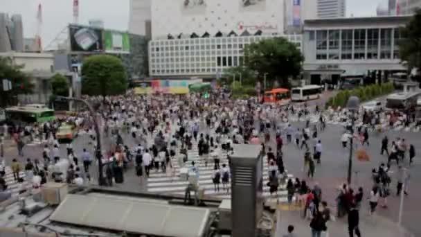 přechod pro chodce dav lidí, mnozí