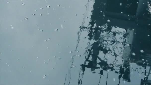 snowflakes snowing water spring