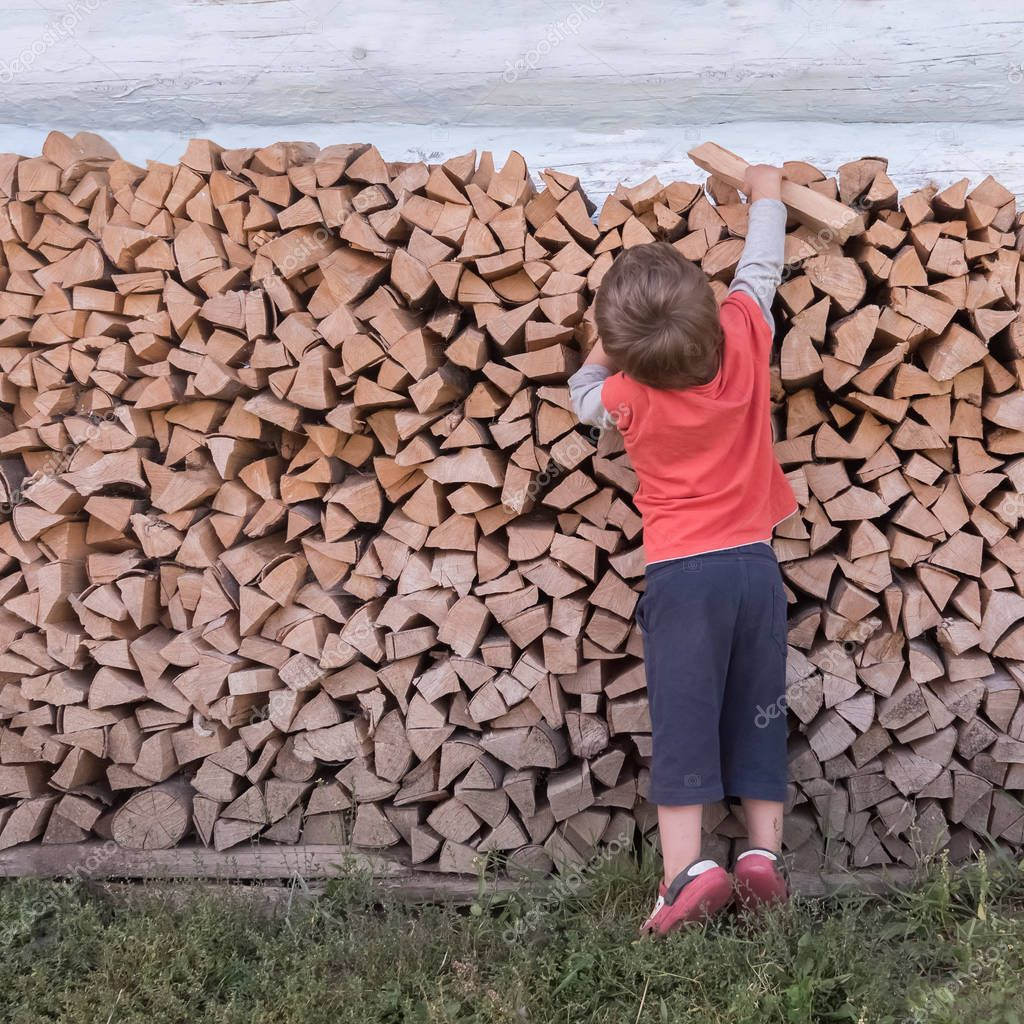 Boy and firewoods. Alternative education concept. Rustic scene. Rural background.