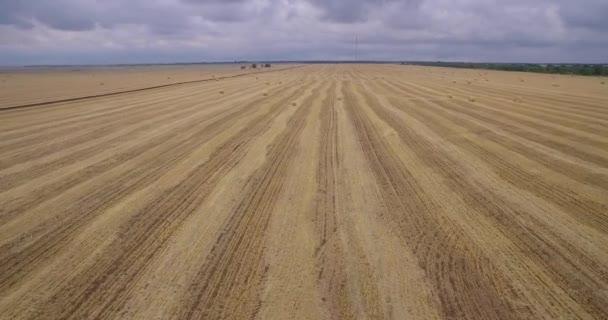 A huge field of mowed grass