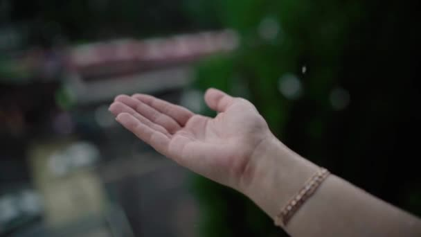 Close up of woman putting her hand in the rain catching drops of rain, water Concept.